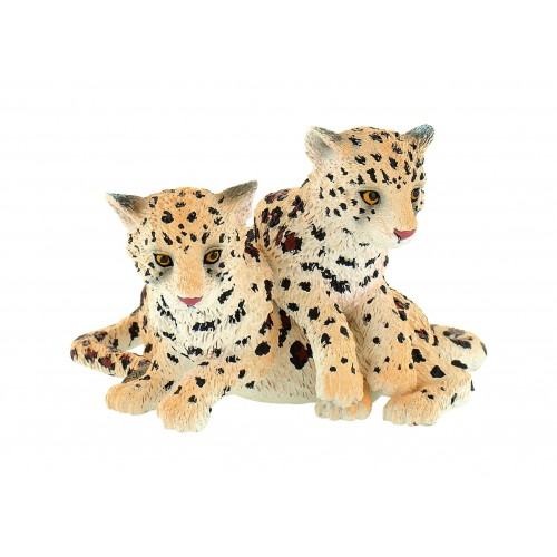 Leopard Baby Group